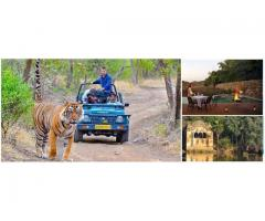Book Luxury Ranthambore Air Charter Tours