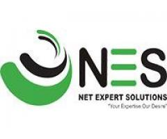 NES the best Linux Online training Institute Noida