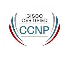 Looking for a Best CCNP Training Institute in Noida
