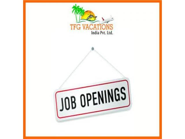 Internet Marketing Jobs-Fresher / Working