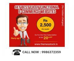 Dynamic Website Development Cost