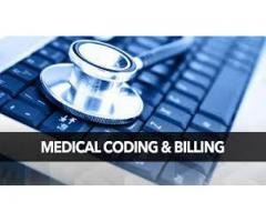 Medical Coding  Institute in Himayat Nagar, Training With 100% Job Placement