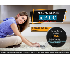 Pega Training Institutes In Ameerpet