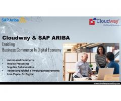 Consulting Services & SAP Products at Best Prices - Cloudwayconsulting