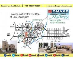 Omaxe Silver Birch Price details at New Chandigarh 95O1O318OO