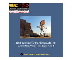 Best Institute for Multimedia 2D / 3D Animation Courses in Hyderabad