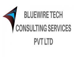 Bluewire Tech LPO service