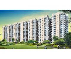 Signature Global Roselia 95A | Affordable Housing in Gurgaon