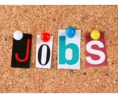 Get Jobs in Pune as per your skill & requirement on Online Jobs India