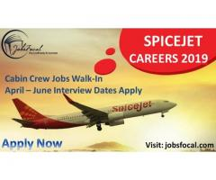 SPICEJET Careers 2019 April Cabin Crew Jobs Walk-In Interview Dates Apply