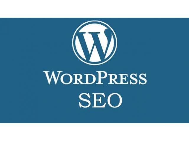 Wordpress SEO Course in Kolkata