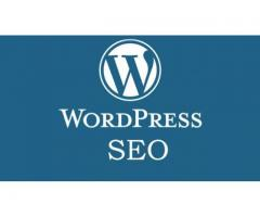 Wordpress SEO Course in Kolkata
