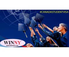 Boost Your Career with an International Degree