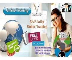 Ariba Consultant Training | Ariba Procurement Training