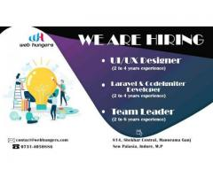 Hire UI | UX Designer and Codeigniter & Laravel | Team Leed indore