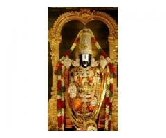 Sri Balaji Travels - Bangalore to Tirumala one day package by car