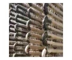 Anti Scaling Water Softener for Industry in Hyderabad