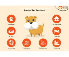 Pet Grooming, Dog Walking, Pet Store in Pune