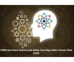 Secure Your Career As Data Scientist With Analytics Path Advanced Data Science Training Program