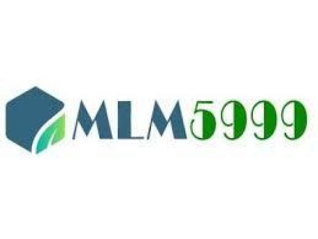 Best MLM Software For Just Rs 5999/- pa Only