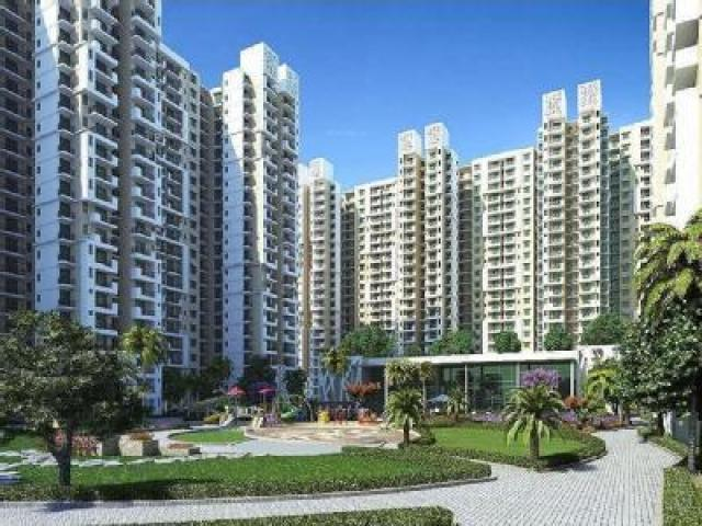 Take Pleasure From Booking Property At White orchid