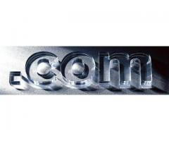 Domain Registration in India