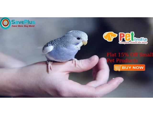 Petindia Online Coupons, Deals & Offers: Flat 15% Off Small Pet Products