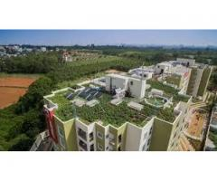 IGBC Certified Projects & Eco-friendly Apartments in Bangalore| Coevolve Group