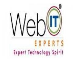 Web Designing Services in Noida,India