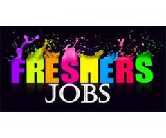 there is the need for the job fresher in india