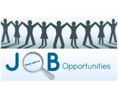 THE JOBS IN GOVERNMENT  SECTOR