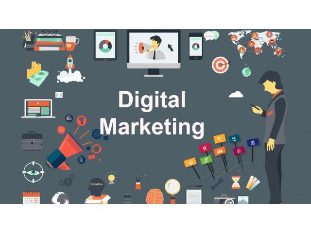 internet marketing training / internship in meerut
