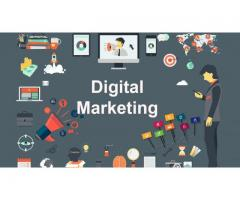 internet marketing training / internship in meerut