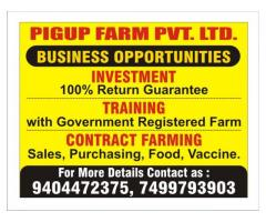 PIGUP FARMING & SERVICES