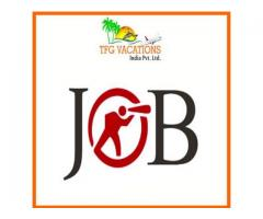 Digital Marketing Executive Jobs In ***