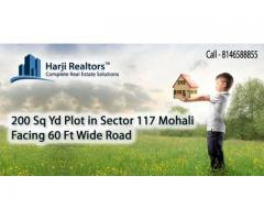 Real Estate Chandigarh