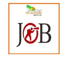 Work From Home Job Opportunity For All!!!