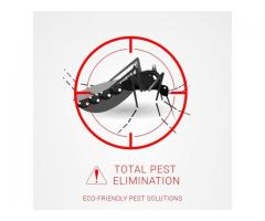 Permanent pest elimination services in Houston