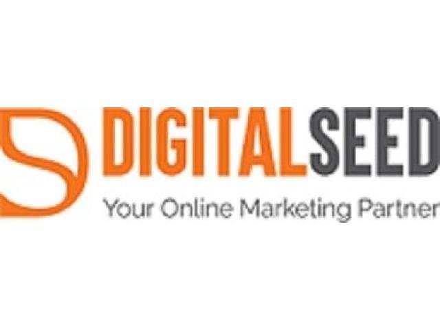 Digital Marketing Company in Pune   Website Design Company in Pune   Digitalseed Agency, India