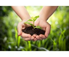 Organic Fertilizer in India
