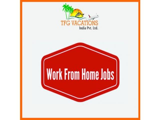 Online Jobs   Online Jobs For Students   Work From Home Jobs