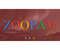 Cheap Website Design Company In Mumbai Zoopam .