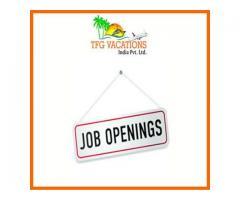 Make Your Dream Job Come True