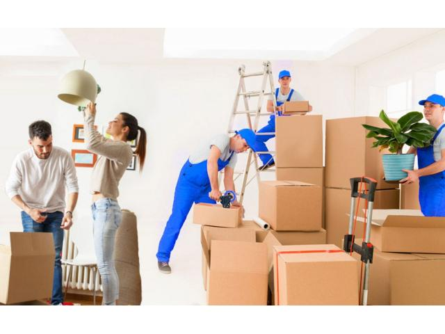 Best local and domestic packer and mover service in Meerut