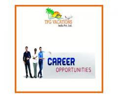 Your Dream Job Come True