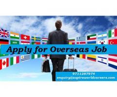 Top Overseas Job Consultants In Delhi   Aspire World Immigration