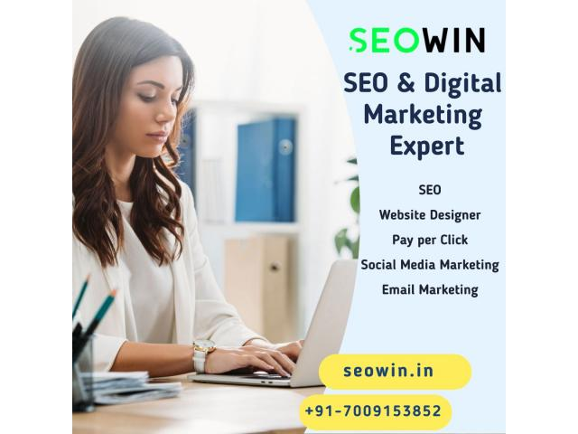 SEOWIN   Digital Marketing Agency Surat