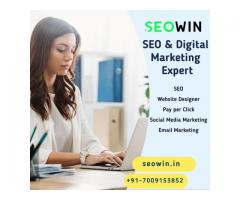 SEOWIN | Digital Marketing Agency Surat