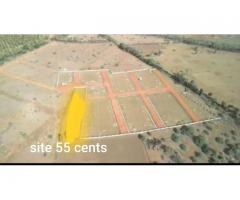 Plot of 55 Cents is for Sale at newly forming bhogapuram highway