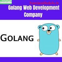 Golang development company | Web development services